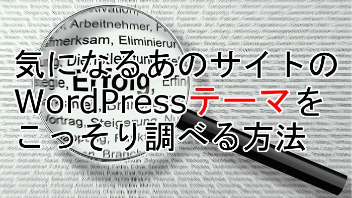 check-wordpress-theme